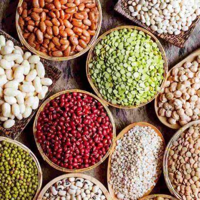 Beans Farming: बड़े पैमाने पर राजमा की खेती कर रहे हैं महाराष्ट्र के किसान, जानिए इसके बारे में सबकुछ