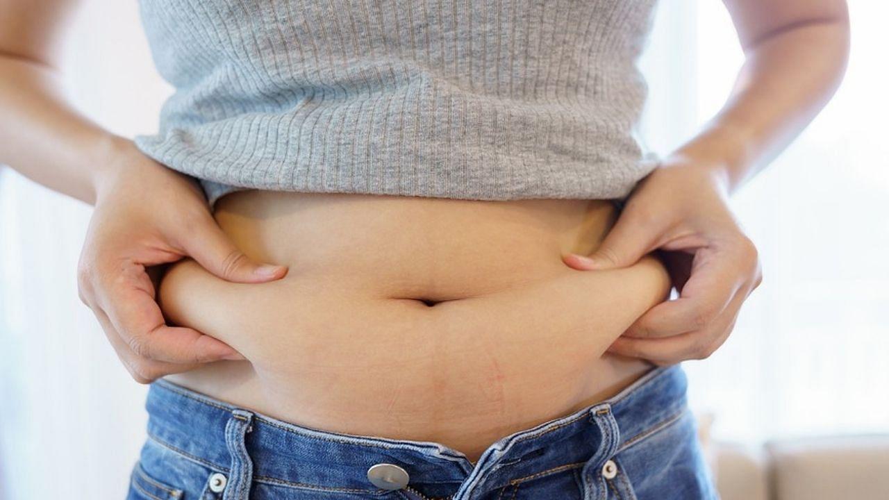 Belly Fat : वर्कआउट नहीं होता, तो इन 5 चीजों को डाइट में करें शामिल, कुछ ही दिनों में अंदर चला जाएगा पेट