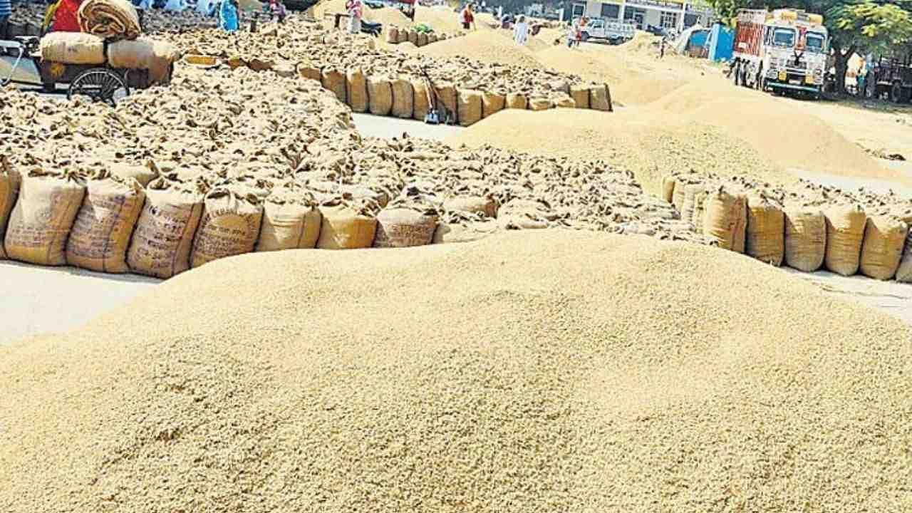 केंद्र सरकार का बड़ा फैसला, MSP पर धान खरीद से पहले किसानों की जमीन के रिकॉर्ड की होगी जांच