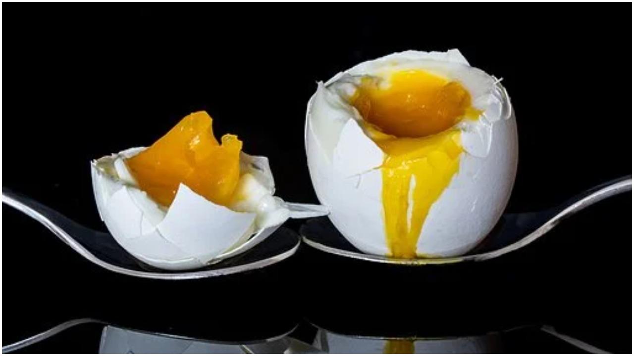 हमारी सेहत के लिए अंडे काफी फायदेमंद माने जाते हैं. डॉक्टर भी अंडा खाने की सलाह देते हैं. क्योंकि इसमें कई तरह के पोषक तत्व पाए जाते हैं. अंडे में कैल्शियम और प्रोटीन की मात्रा भरपूर पाई जाती है और इसे बनाना भी आसान होता है. उबले हुए अंडे खाने के कई फायदे हैं, लेकिन लोग अंडे को उबालकर बाद में खाने के लिए रख देते हैं. मगर क्या आप जानते हैं कि अंडे को उबालने के कितनी देर बाद खा लेना चाहिए.