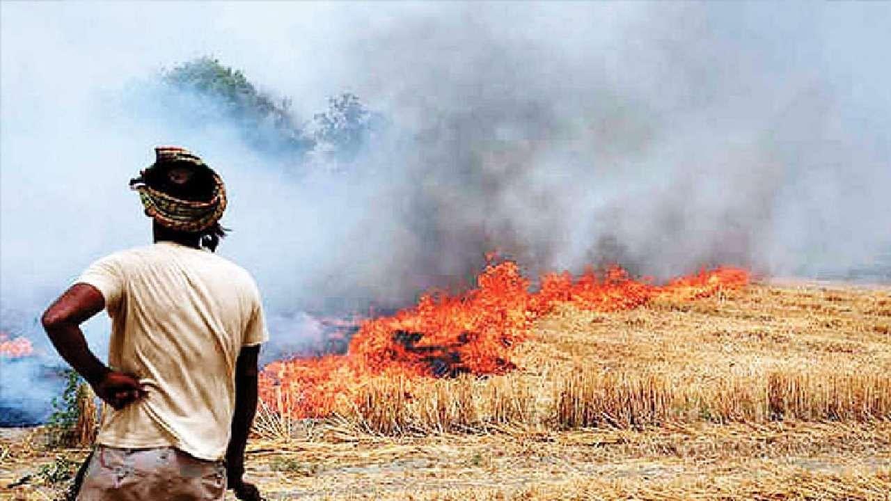 पराली प्रदूषण पर सख्त हुई सरकार, इसे जलाने से रोकने के लिए खास इंतजाम के निर्देश