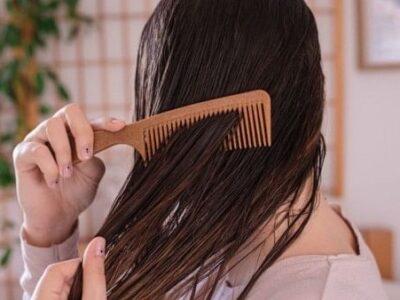 Hair Care Tips: गीले बालों में क्यों नहीं करना चाहिए कंघी, जानिए कंघी करने का सही तरीका क्या है !