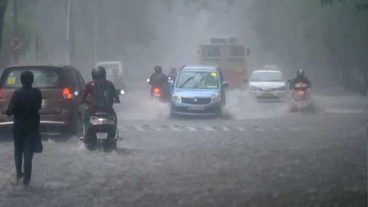 Haryana Weather Update: हरियाणा के कई हिस्सों में झमाझम बारिश, पानी से लबालब हुई सड़कें, तापमान में दर्ज की गई गिरावट