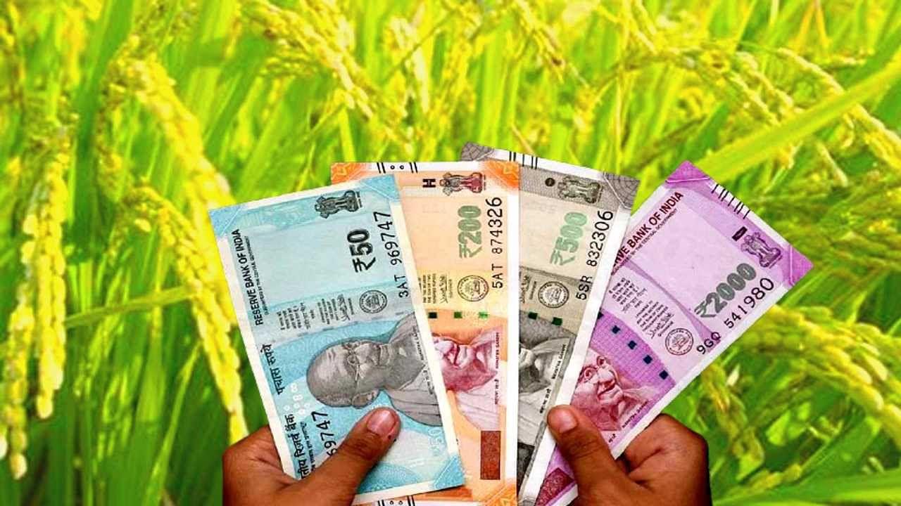देश में झारखंड के किसानों की आय सबसे कम, मेघालय, पंजाब और हरियाणा सबसे आगे, देखिए पूरी रिपोर्ट