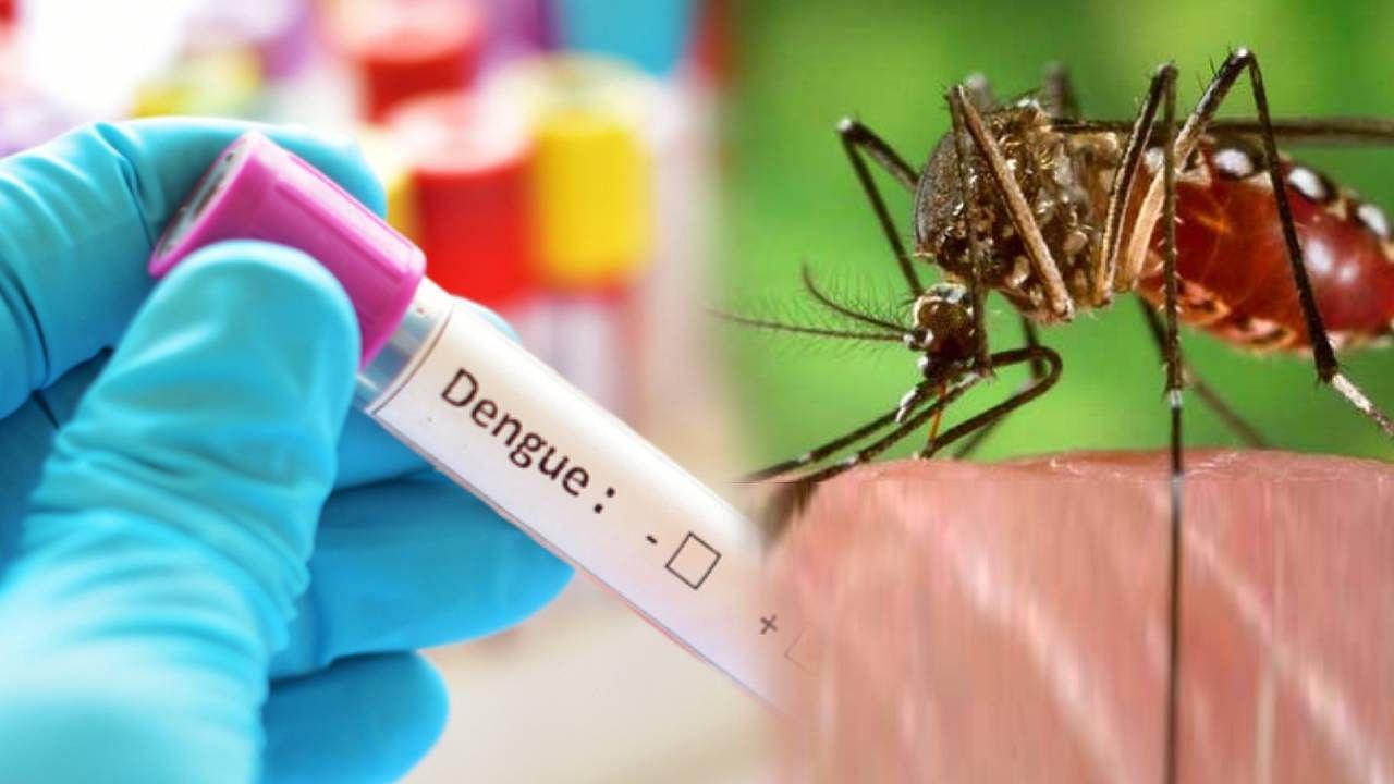 डेंगू की जांच के लिए ज्यादा पैसे वसूलने की शिकायत पर लखनऊ प्रशासन का बड़ा कदम, टेस्ट की कीमत तय की, जानें रेट