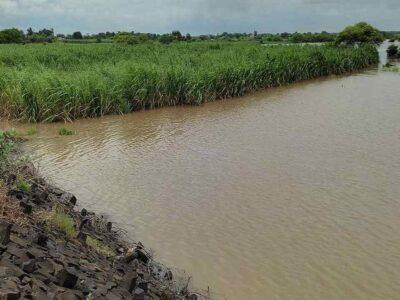 मौसम विभाग ने किया अलर्ट - गुलाब चक्रवात के कारण मध्य महाराष्ट्र में भारी बारिश की संभावना, फसल को हो सकता है नुकसान