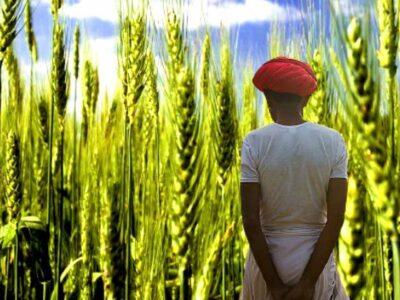 PM Kisan Scheme: जानिए, आवेदन के बावजूद 7 लाख 24000 किसानों को क्यों नहीं मिला पैसा?