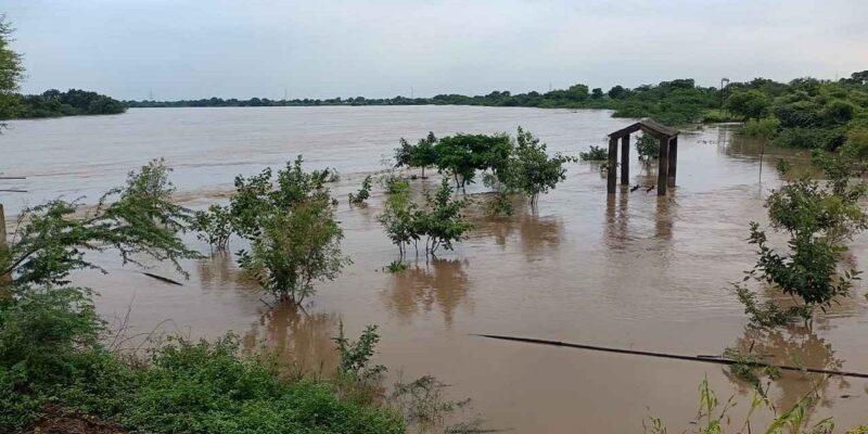 बाढ़ से हुए नुकसान की भरपाई करेगी सरकार, फसल के साथ-साथ अब इन सभी सामानों के लिए भी मिलेगा पैसा