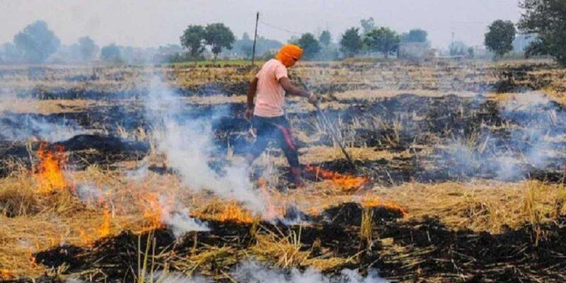 इस बार पराली नहीं जला रहे किसान, फसल अवशेष प्रबंधन के इस तरीके से बढ़ा रहे अपनी कमाई