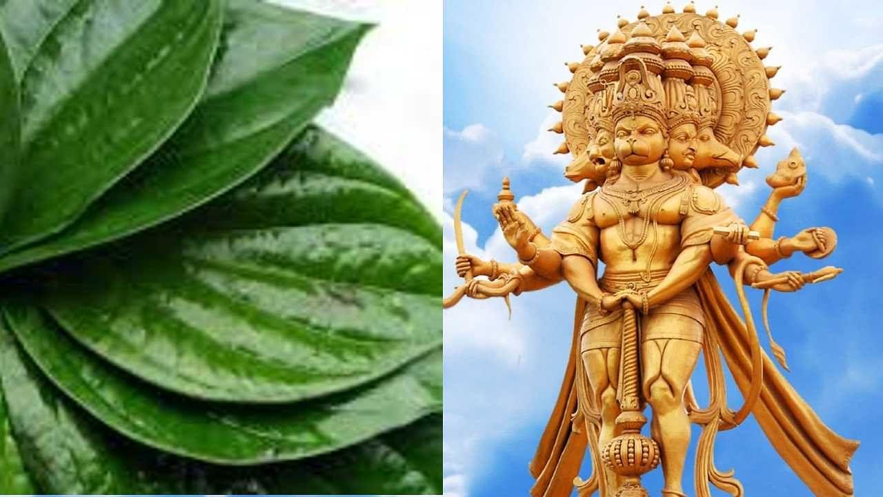 Tuesday Worship Tips : मंगलवार को पान से प्रसन्न होंगे हनुमान, जानें बजरंगी को मनाने का महाउपाय