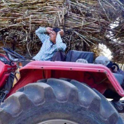 उत्तर प्रदेश: गन्ना किसानों के लिए जरूरी खबर, एसएमएस से भेजी जाएगी गन्ना पर्ची, मोबाइल नंबर गलत हो तो ऐसे करें अपडेट