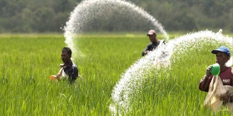 भारत में कृषि के लिए एक नये कार्बन नीति की जरूरत, आखिर क्यों?