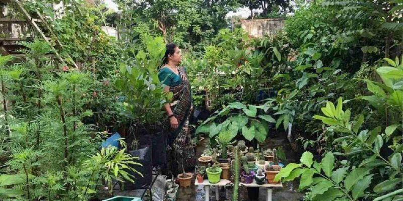 56 साल की उम्र में इन महिला ने शौक में शुरू की खेती, अब उगा रही है 60 प्रकार के फल