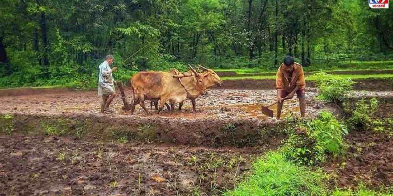 इसे केंद्र सरकार ने अनाज की खरीद करने वाले राज्यों को अपनाने का निर्देश दिया है ताकि खरीद संचालन में बिचौलियों पर नजर रखी जा सके और सुनिश्चित किया जा सके कि किसानों को न्यूनतम समर्थन मूल्य (एमएसपी) मिले.