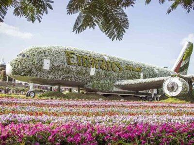 दुबई के गॉर्जियस ग्रीन पार्क को एक बार जरूर देखें, आप बार-बार यहां आना चाहेंगे