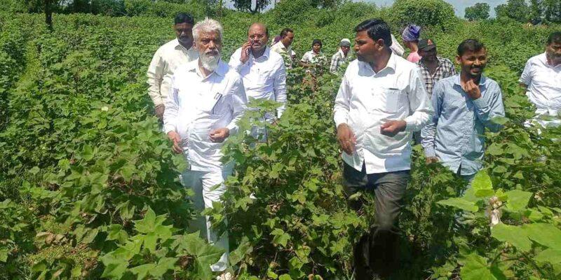 कृषि और खाद्य प्रसंस्करण उद्योग में महाराष्ट्र का ब्रांड बनाने पर जोर: दादाजी भूसे