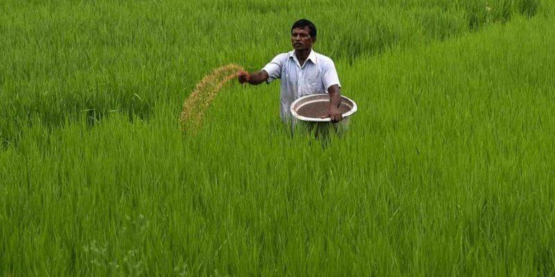 किसानों को नहीं होगी खाद की दिक्कत, अब एक ही प्लांट से होगा 18 लाख टन का उत्पादन