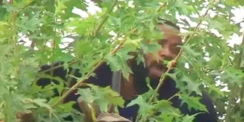 गिरफ्तारी के डर से पेड़ पर जा चढ़ा शख्स, पुलिस नीचे खड़ी घंटों तक करती रही इंतजार