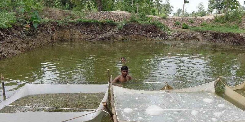 कम जमीन में अधिक कमाई का साधन है मछली पालन, इस तरह मिलेगा योजनाओं का लाभ