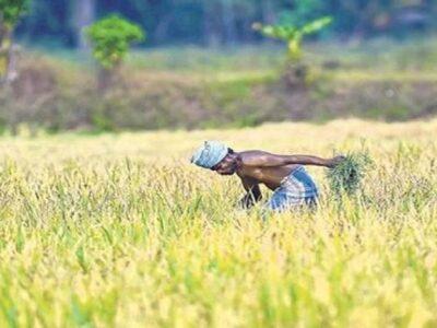 किसान भाईयों के लिए जरूरी खबर, जानें देश में कृषि के लिए चलाई जा रही कौन-कौन सी योजनाएं