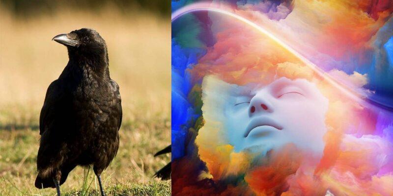 Indication of crow dreams : सपने में कौए दिखने पर क्या मिलते हैं संकेत, जानें इसके शुभ-अशुभ फल