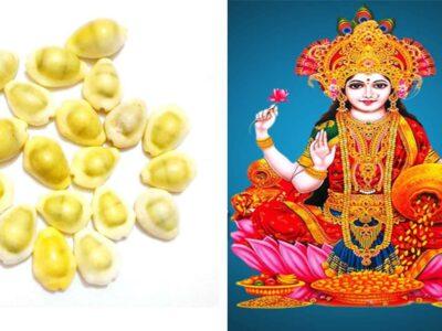 Kaudi ke upay : मां लक्ष्मी का आशीर्वाद पाने के लिए इस दीपावली पर जरूर करें कौड़ी से जुड़ा ये महाउपाय