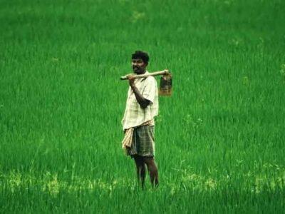 मध्य प्रदेश सरकार ने किसानों के लिए बड़ा ऐलान- सस्ती बिजली के लिए जारी होंगे 15000 करोड़ रुपये