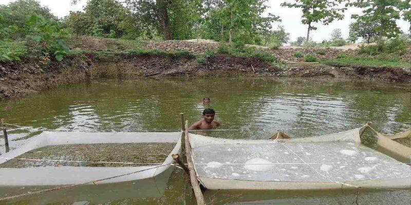 उत्तर प्रदेश में राष्ट्रव्यापी नदी तटीय कार्यक्रम शुरू, जानिए क्या है इसमें खास, मछली पालकों को इससे कैसे मिलेगा लाभ