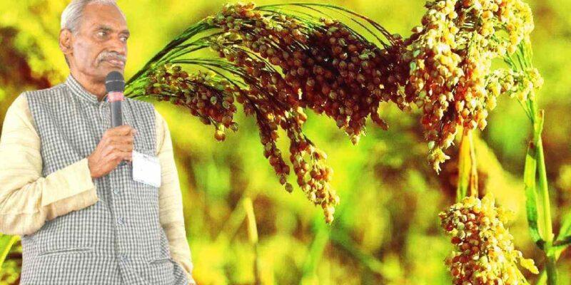 नेचुरल फार्मिंग: महाराष्ट्र के शख्स ने की है खेती के इस कांसेप्ट की शुरुआत, जानिए इसके बारे में सबकुछ