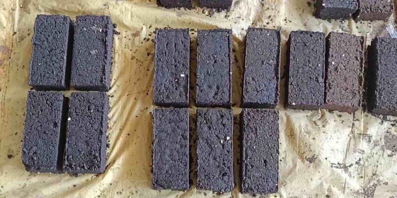 अब गाय, भैंस खाएंगे स्पेशल कैंडी चॉकलेट, दूर होगी पोषक तत्वों की कमी, बढ़ेगा दूध उत्पादन
