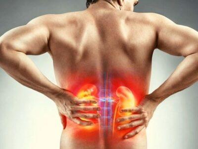 देश में हर दस में से एक व्यक्ति को है किडनी की बीमारी, इन लक्षणों के दिखते ही हो जाएं सतर्क