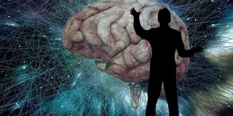 ऐसे काम करता है दिमाग, जिसे बादाम-अखरोट नहीं... बल्कि ये तीन चीजें ज्यादा तेज चलाती हैं! आप भी खाएं...