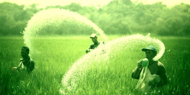 खत्म नहीं हो रही किसानों की टेंशन! अब हुई खाद की कमी, सरकार ने उठाया बड़ा कदम