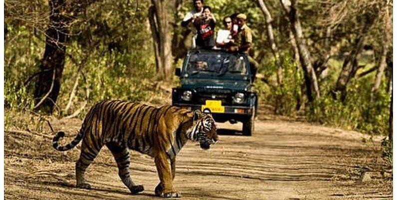 Uttarakhand: जिम कॉर्बेट टाइगर रिजर्व का नाम अब होगा रामगंगा नेशनल पार्क, केंद्रीय मंत्री अश्विनी चौबे ने दिए निर्देश