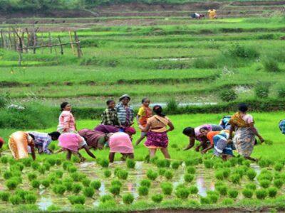 प्राकृतिक खेती के जरिये सफलता की नयी कहानी लिख रही हिमाचल प्रदेश की महिलाएं, पर्यावरण को भी हो रहा फायदा